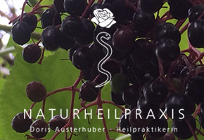 Naturheilpraxis Doris Austerhuber Website, Corporate Design und Fotografien